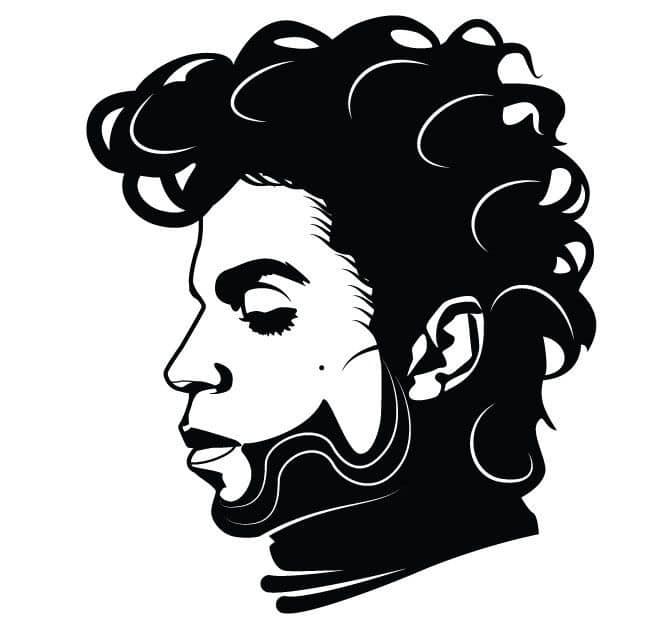 apprendre-guitare-autodidacte-musicien-celebre-prince